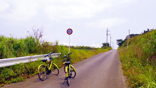 自転車が似合う島